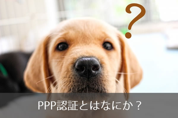 PPP認証とはなにか?