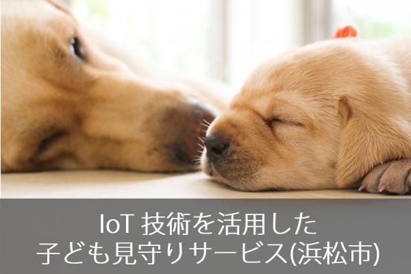 IoT 技術を活用した子ども見守りサービス(浜松市)